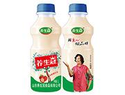 养生冠乳酸菌饮品1L草莓味