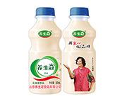 养生冠乳酸菌饮品340ml原味