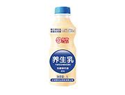 �B牛乳乳酸菌�品原味1L