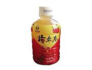 润泽源楂枣恋山楂红枣饮料350ml