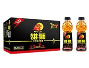 雄狮维生强化饮料600ml×15瓶