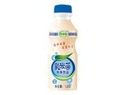 合元-合益优乳酸菌乳饮料原味1.25L