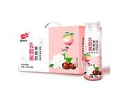 三��客乳酸菌水果茶箱�b