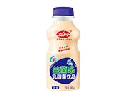 龙丹益菌乐原味乳酸菌饮品340ml