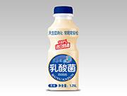 蓝嘉源原味乳酸菌风味饮品1.25L