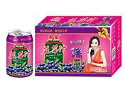 椰星蓝莓汁饮料310g×20罐