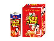 椰星荔枝爽水果饮料饮品240gx24罐