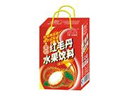 椰星红毛丹水果饮料饮品240gx20罐