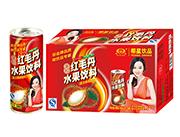 椰星红毛丹水果饮料饮品240gx24罐