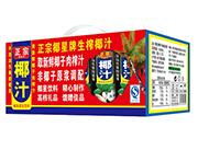 椰星正宗椰汁植物蛋白�料�Y盒