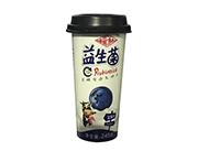 福淋益生菌蓝莓味发酵型复合乳饮品245g