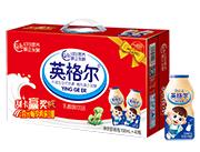 英格尔乳酸菌饮品100ml×40瓶