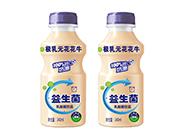 极乳元花花牛益生菌乳酸菌饮品340ml