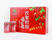 北大荒山楂果汁饮料310ml×24罐