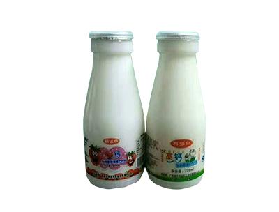 创运乐高钙奶瓶装