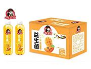 果C菇凉益生菌复合果汁芒果味