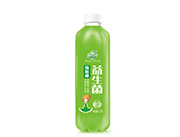 果哇伊益生菌猕猴桃发酵果汁饮料1.25L