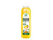 果哇伊益生菌芒果发酵果汁饮料500ml