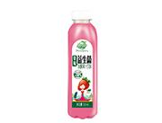 果哇伊益生菌草莓发酵果汁饮料500ml
