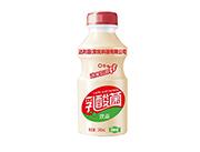达利园(深圳)乳酸菌饮品340ml