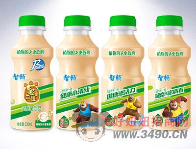 智畅乳酸菌饮品330ml原味