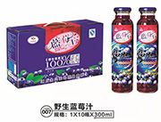 小白兰野生蓝莓汁