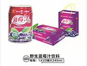 小白兰蓝莓汁灌装