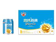 太子奶高钙核桃复合蛋白饮品250ml×16罐