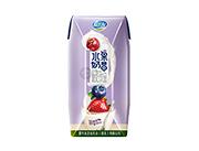 友芝友混合莓味水果奶昔酸奶饮品钻包礼盒200g