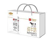 初养纯牛奶250ml×10盒