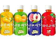 果汁饮料小瓶