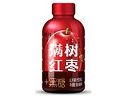 特���t��果汁�料380ml