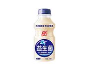 乳酸菌风味饮品益生菌原味340ml