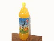 桃李�M天下橙粒��