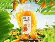 芒果益生菌发酵果汁