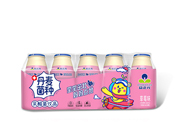 益正元丹麦菌种-草莓味乳酸菌饮品100mlx5瓶