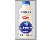 鑫鑫味动力乳酸菌饮品340ml