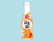 顶真益生菌芒果汁1.25L