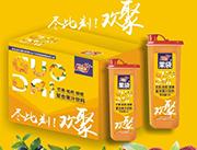 柯菲雪芒果枇杷甜橙复合果汁饮料