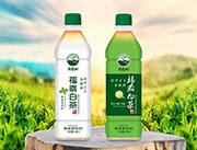 思路和福鼎白茶果味茶饮料460ml