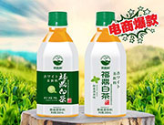 思路和福鼎白茶果味茶饮料330ml