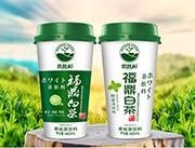 思路和福鼎白茶果味茶饮料460ml
