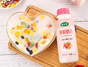 欢乐滋果粒奶昔草莓椰果酸奶310ml