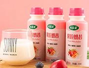 欢乐滋果粒奶昔椰果草莓酸奶310ml