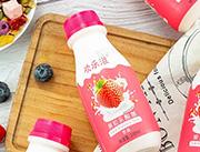 欢乐滋草莓果粒乳酸菌310ml