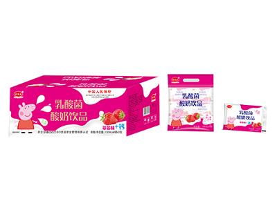 乳酸菌酸奶�品箱�b