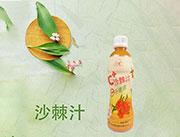 宇璐380ml沙棘汁