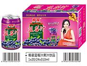 椰星�{莓汁果汁�品310ml