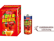 荔枝爽水果�料240g