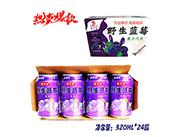 宝汁源野生蓝莓蓝莓汁汁汽水320mlx24罐